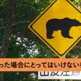 やってはいけない?熊と出会った場合にとってはいけない行動とは?