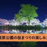 茂原公園の「桜まつり」へのアクセスと楽しみ方(2018年版)