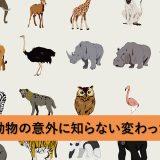 ゾウ・キリン・パンダ・コアラ・カバ・ラクダの知られざる特徴とは?